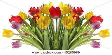 Fresh tulip bouquet.
