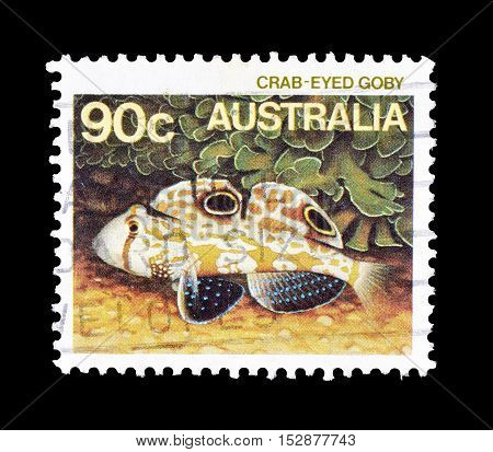 AUSTRALIA - CIRCA 1984 : Cancelled postage stamp printed by Australia, that shows Crab eyed goby.