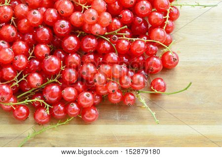 close up from redcurrant on wooden background