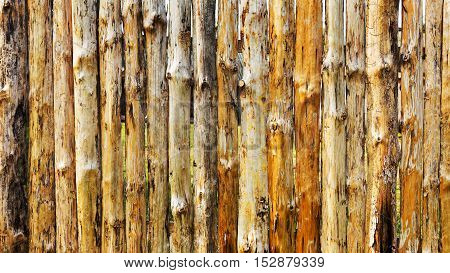 Background With Old Wooden Texture For Any Of Your Design
