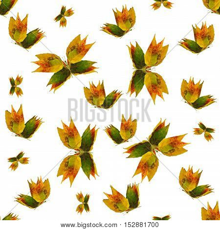 multicolor seamless background pattern texture made of butterflies of various flowers