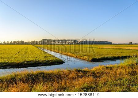Ditches in a flat rural area in warm sunny backlit in the Netherlands. It is still early in the morning in the fall season.