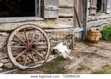 Wagon wheel and cow skull next to an old barn. Wooden bucket in the background