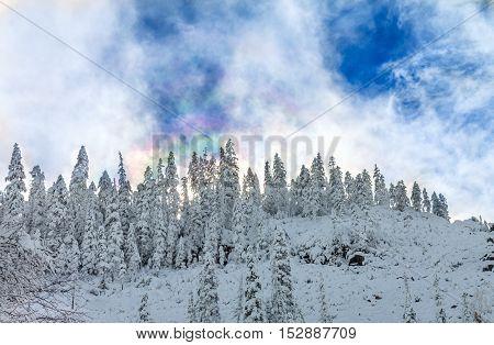 Beautiful taiga hills on Far East of Russia in early october. Taiga in winter. Beautiful nature.
