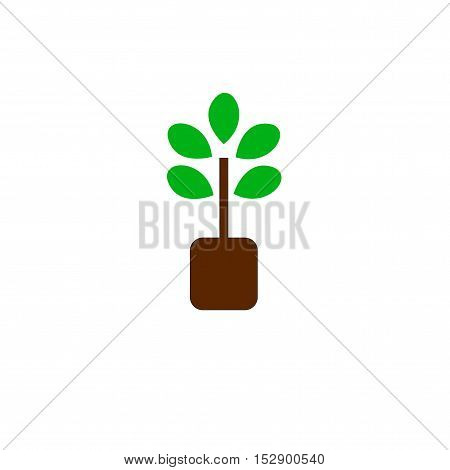 tree icon vector concept green on white backgrond
