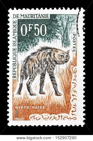 MAURITANIA - CIRCA 1963 : Cancelled postage stamp printed by Mauritania, that shows Hyena.