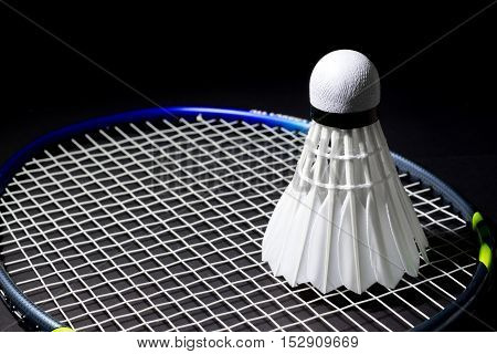 Shuttlecocks On The Racket.