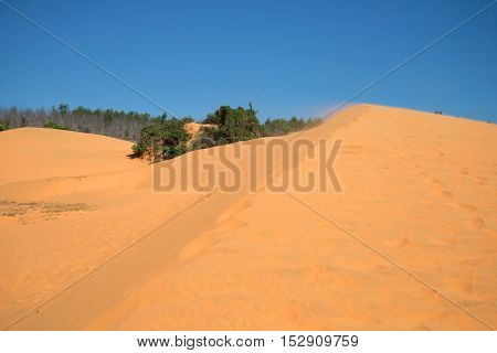 Wind on the edge of a large dune. Red dunes - a natural attraction in the vicinity of Phan Thiet. Vietnam