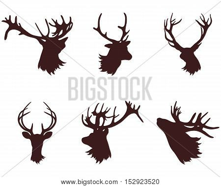 The head and antlers of a deer. Design elements deer. Vector illustration.