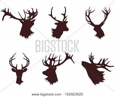 The head and antlers of a deer. Design elements deer. Vector illustration.