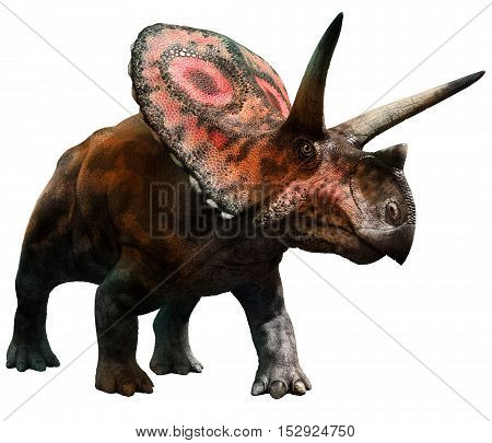 Torosaurus dinosaur from the Cretaceous era 3D illustration