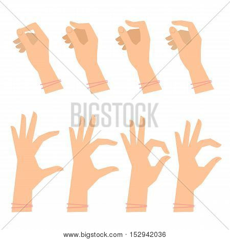 Various gestures of female hands on a white background. Vector flat illustration of woman's hands in different situations. Vector design elements for infographic web internet presentation booklet.