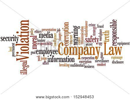 Company Law Violation, Word Cloud Concept 4