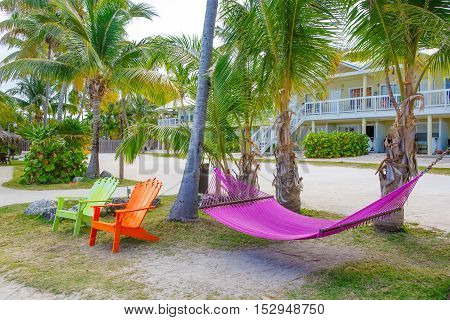 Tropical resort with chaise longs and hammocks near palms on sandy beach, Key West, Florida, USA