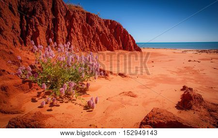 James Price Point North of Broome has been the subject of considerable controversy in recent times. Although I have been to very many beautiful spots along the Dampier Peninsular I had never been to James Price Point so while in Broome we decided to exper