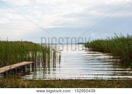 Summer rushy lake view (Svityaz Shatsky National Natural Park Ukraine).