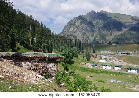 Nomadic village in Sonamarg in Kashmir, India