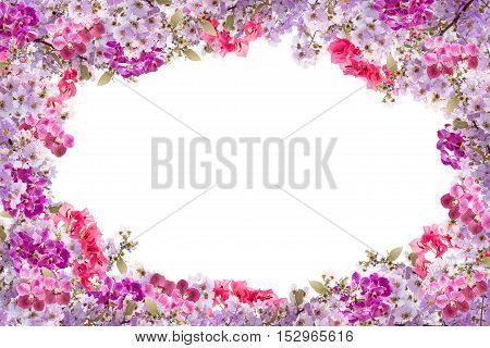 Beautiful purple flower frame on white background.