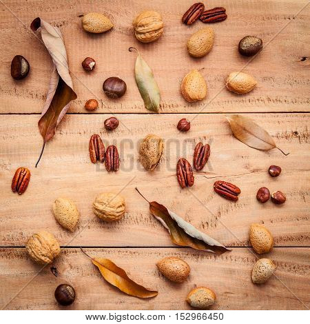 Various Kinds Of Nutshell  Walnuts Kernels ,hazelnuts, Almond Kernels And Pecan With Dried Leaves Se