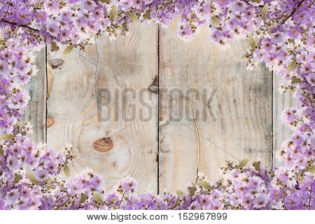Beautiful purple flower frame on wood background.