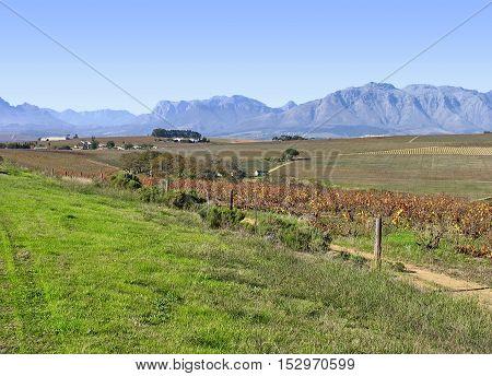 THIS STELLENBOSCH, CAPE TOWN SOUTH AFRICA 12BHN