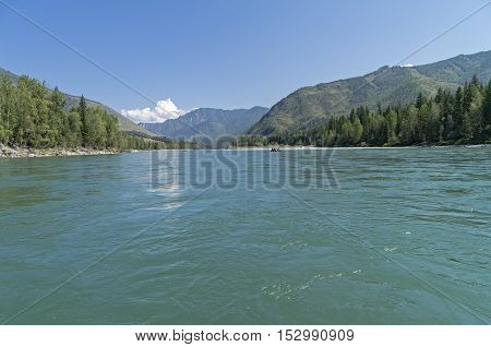Katun river Altay Russia. View downstream from the middle of the river. Sunny summer day.