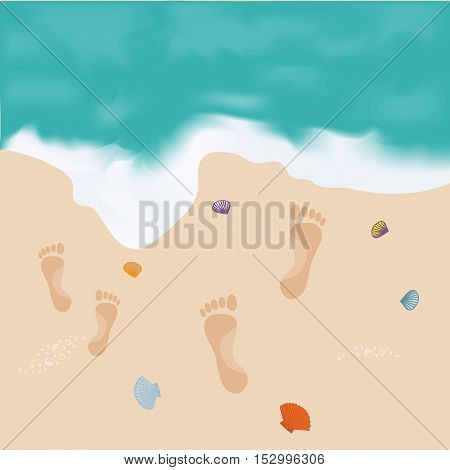 Nice Picture Of The Sea, Shore With Footprints And  Shells