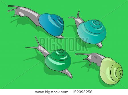 Four cartoon snail crawling on the grass. Vector illustration