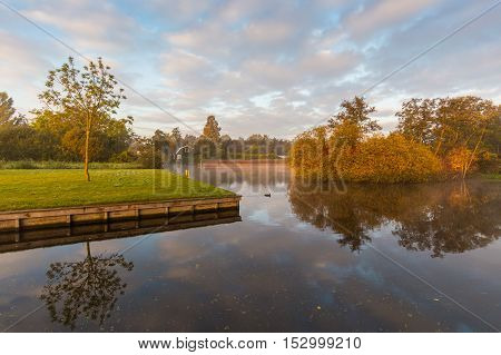 Early morning sun illuminates the autumn leaves above misty waters in Aalsmeer, The Netherlands poster