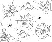 Halloween monochrome spider web and spiders isolated on white background. Hector venom cobweb set. Vector illustration. poster