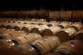 Wine cellar in warm ambiance. Rows of wooden wine barrels at a winery. poster