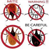 A set of warning sign. Spider mites. Red mite. Mite allergy. Epidemic. Mite parasites. Vector illustration poster