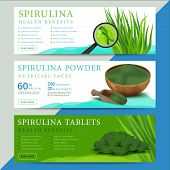 Set of spirulina algae information website or social media banners. Arthrospira seaweed dietary supplement background templates. Superfood vector illustration poster