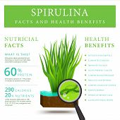 Set of spirulina algae infographics banner. Arthrospira seaweed dietary supplement background template. Superfood vector illustration poster