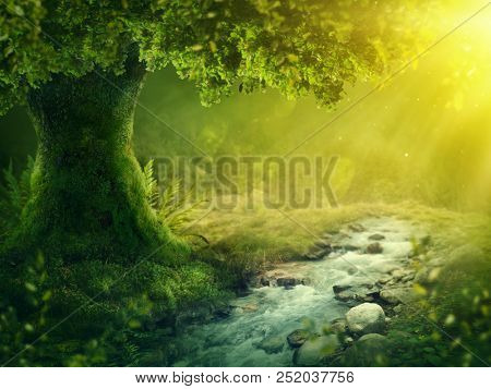 Deep magic forest with sunshine