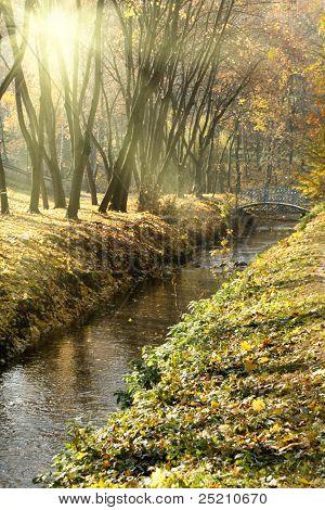 Vertical Photo Of The Autumn Park