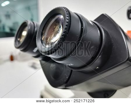 Head (diopter Adjustment) And Pair Of Eyepieces (ocular Lens) Of A High-tech Microscope In A Scienti