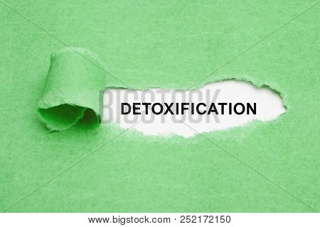 The Word Detoxification Appearing Behind Ripped Green Paper.