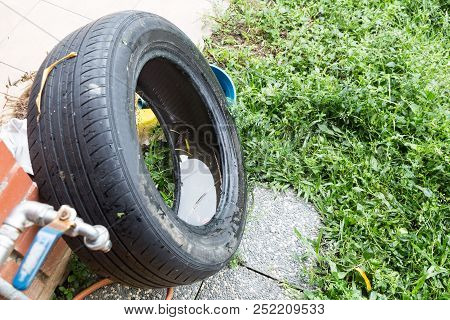 Standing Water Trapped In Tire And Containers Breed Mosquito