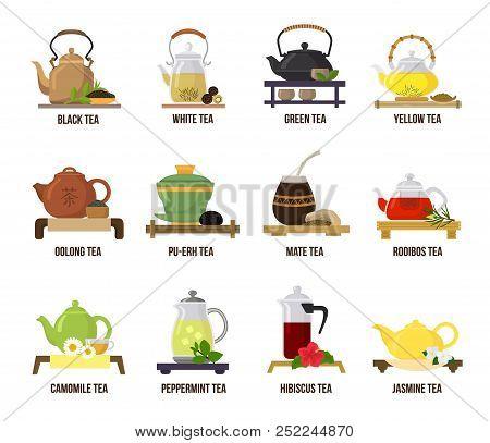 Tea Vector Green Or Black-tea In Teapot Illustration Drinking Set Of Jasmine And Rooibos Fruity Drin