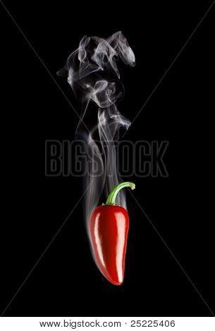Smoking Hot red Jalapeno Pepper (Capsicum Annuum)