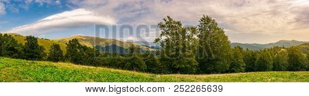 Panorama Of A Beautiful Summer Landscape. Ancient Beech Forest On The Grassy Meadow And Mountain Rid