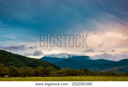 Dawn In Mountainous Countryside. Horses Grazing In The Field. Lovely Autumn Landscape