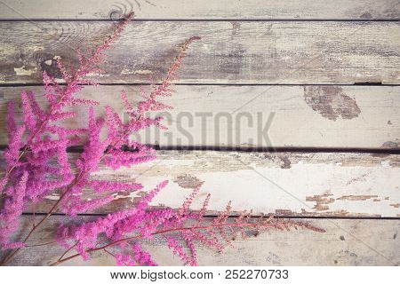Beautiful Astilbe Flowers Border On Aged Wooden Background