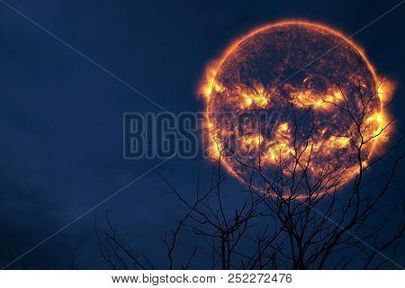 Halloween Sun Back Silhouette Tree And Night Sky