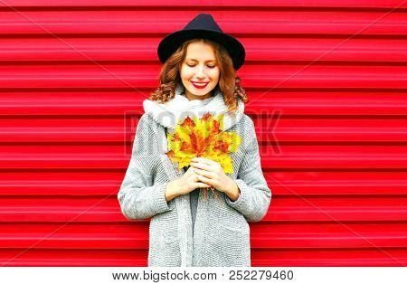 Stylish Happy Portrait Woman Holds Yellow Maple Leaves On A Red Background