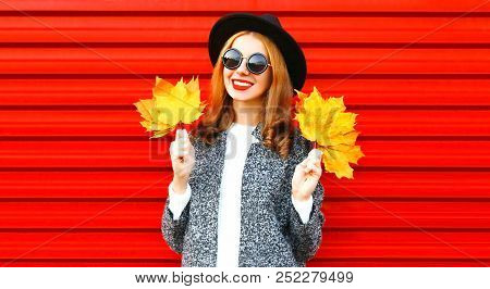 Stylish Happy Autumn Smiling Woman Holds Yellow Maple Leaves On A Red Background