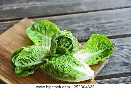 A Lot Of Fresh Romaine Lettuce On Wooden Floor. Healthy And Benefits Of Green Leaf Lettuce.