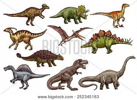 Dino Sketches Of Triceratops, Tyrannosaurus Rex And Stegosaurus, Brontosaurus, Spinosaurus And Veloc