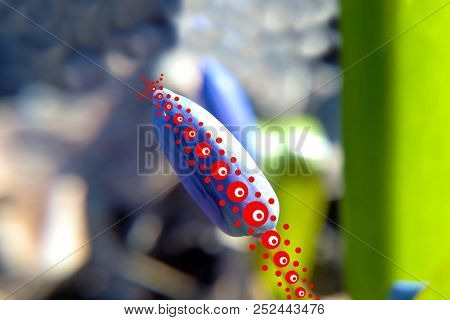 Flower Energy Red Geometric Patterns Prana Blurred Forest Background In Sunny Weather